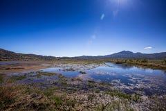 Lashihai jezioro, Yunnan Zdjęcie Royalty Free