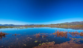 Lashihai Lake fotografering för bildbyråer