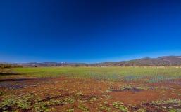 Lashihai lake. In Yunnan province, Lijiang. China Royalty Free Stock Image