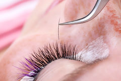 Lashmaker making artificial lashes Royalty Free Stock Photos