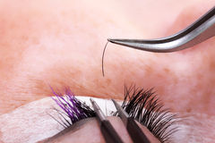 Lashmaker making artificial lashes. Closeup Royalty Free Stock Images