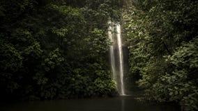 LaSierpe vattenfall, BahÃa Malaga Stillahavs- Colombia royaltyfri fotografi