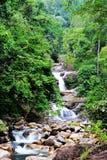 Lasirwatervallen stock foto's