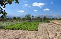 Lasithi plateau at Crete, Greece Royalty Free Stock Photos