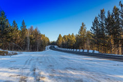 Lasowa autostrada Obrazy Stock