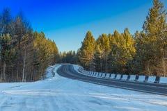 Lasowa autostrada Obraz Royalty Free
