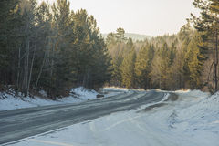 Lasowa autostrada Zdjęcia Stock