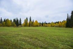 Lasowa bajka w Komi fotografia stock
