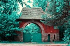 lasowa brama obrazy royalty free