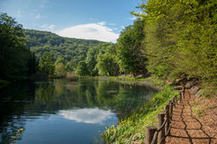 Lasowa ścieżka Jankovac jeziorem w lasu parku Jankovac, natura Zdjęcie Stock