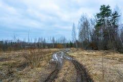 Lasowa droga na chmurnym wiosna dniu Zdjęcia Royalty Free