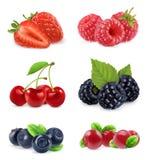 Lasowa jagoda Słodka owoc realistyczna ballons ilustracja kartonowe koloru ikony ustawiać oznaczają wektor trzy ilustracja wektor