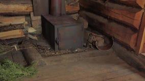 Lasowa kabina inside zbiory wideo