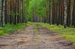 lasowa koh mak droga Fotografia Stock