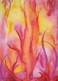 lasowa magia Obrazy Royalty Free