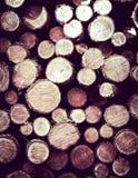 Lasowa odprawa - drewniani promienie jako natury t?o zdjęcie royalty free