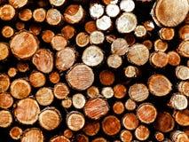 Lasowa odprawa - drewniani promienie jako natury t?o zdjęcie stock