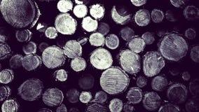Lasowa odprawa - drewniani promienie jako natury t?o obrazy stock