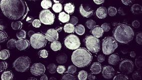 Lasowa odprawa - drewniani promienie jako natury t?o obraz stock