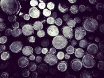 Lasowa odprawa - drewniani promienie jako natury t?o zdjęcia royalty free