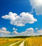 lasowa pobliski droga Zdjęcie Stock
