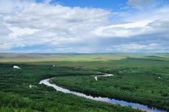 lasowa rzeka Obraz Stock
