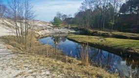 Lasowa rzeka Zdjęcie Royalty Free