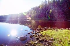Lasowa rzeka na lato wieczór obrazy stock