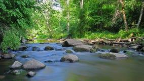 Lasowa rzeka, ruch plama, upływ zbiory