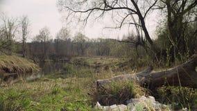 Lasowa rzeka w wio?nie Śmieciarski lying on the beach na trawie zbiory