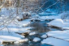 Lasowa rzeka w zimie Obrazy Royalty Free