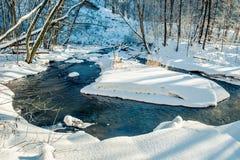 Lasowa rzeka w zimie Zdjęcia Stock