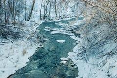 Lasowa rzeka w zimie Fotografia Royalty Free