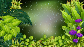 Lasowa scena na deszczowym dniu royalty ilustracja