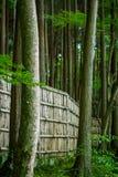Lasowa scena z ogrodzeniem Zdjęcia Royalty Free