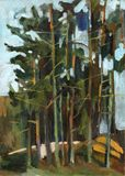 lasowa sosna ilustracji