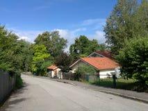 Lasowa ulica obraz stock