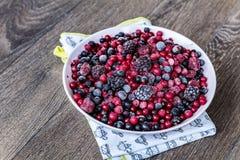 Lasowe owoc Obraz Stock