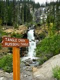 Lasowe siklawy, Kanadyjskie Skaliste góry Fotografia Stock
