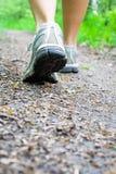 lasowego butów sporta śladu chodząca kobieta Obraz Stock