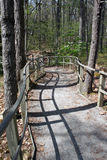 lasowej ścieżki podróży przejście Obraz Stock