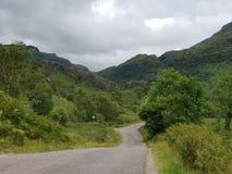 Lasowej drogi góra, natura obraz stock