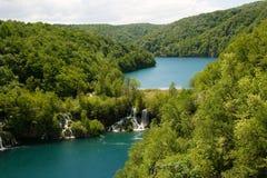 lasowi jeziora Obrazy Stock