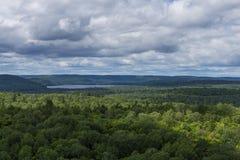 Lasowi Toczni wzgórza Fotografia Royalty Free