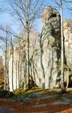 lasowi wyniosli kamienie obrazy royalty free