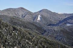 Lasowi wzgórza w zimie Obrazy Stock