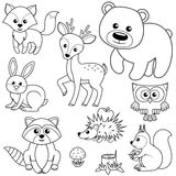 Lasowi zwierzęta Fox, niedźwiedź, raccon, zając, rogacz, sowa, jeż, wiewiórka, bedłka i drzewny fiszorek, Czarny i biały wektorow royalty ilustracja