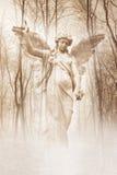 Lasowy anioł Obrazy Stock