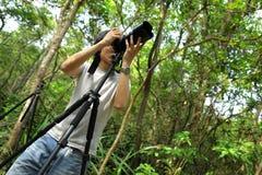 lasowy fotograf Zdjęcia Stock