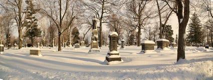 Lasowy gazonu cmentarz obrazy royalty free